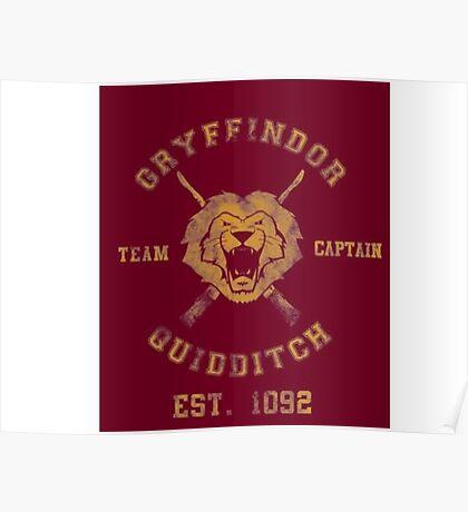 Gryffindor Quidditch - Team Captain Poster