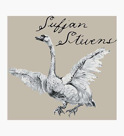 Sufjan Stevens - Seven Swans Photographic Print