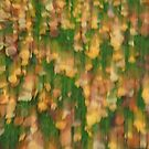 Fall by Themis
