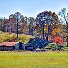 Farm Country Autumn by Savannah Gibbs
