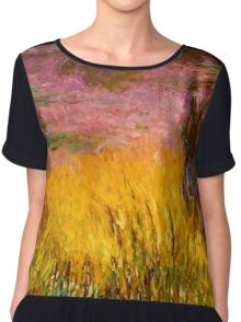 Untitled Chiffon Top