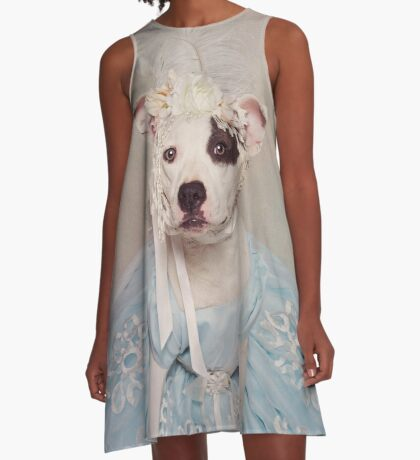 Shelter Pets Project - Rascal 2 A-Line Dress