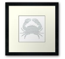 Whitewashed Crab Framed Print