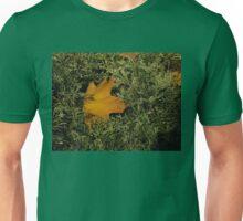 An Autumn Leaf Unisex T-Shirt