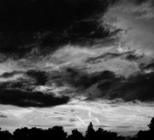 Black and White Sunset Sticker