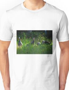 Wild Turkeys in Some Grass Unisex T-Shirt