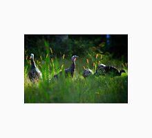 Wild Turkeys in Some Grass Unisex T-Shirt