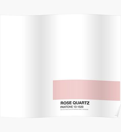 Pantone Rose Poster