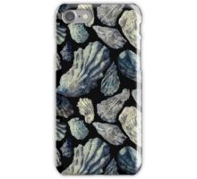 Oyster Shells iPhone Case/Skin