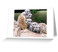 Many Meerkat Sentries Greeting Card