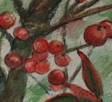 Berries on a Bush WC161122h Sticker