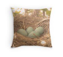 Robin's Eggs Throw Pillow