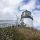 Owls Head Lighthouse by Jack Ryan