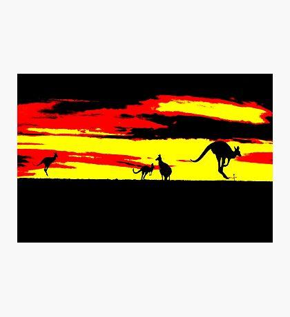 Kangaroos silhouettes at Sunset Photographic Print