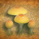 Autumn Shrooms by Rebecca Bryson