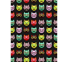 Cats with Mustaches Photographic Print
