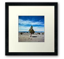 Mono Lake, California Framed Print