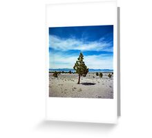 Mono Lake, California Greeting Card