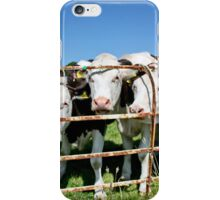 Friendly Cows iPhone Case/Skin