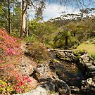 Everglades Garden, Leura, NSW by SusanAdey