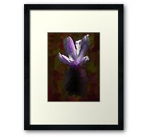Bright Petals emerge from the Dark Framed Print