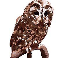 Tawny Owl Illustration Photographic Print