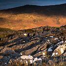 Blaze of light, near Kinloch Rannoch, Scotland by Cliff Williams