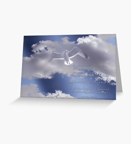 Seagull with Matthew 6:26-27 in White Letters Greeting Card