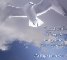 Seagull with Matthew 6:26-27 in White Letters Sticker