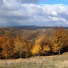 An Autumn Scene in Romania by Dennis Melling