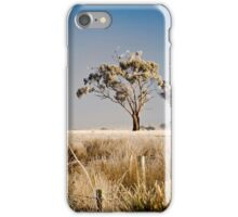 frosty trees iPhone Case/Skin