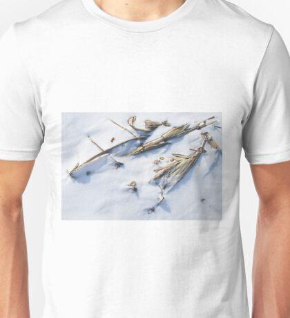Winter Archeological Findings Unisex T-Shirt