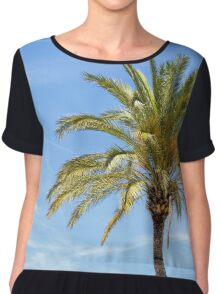 Palm tree against blue sky.  Chiffon Top