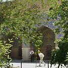 Masjed-e Shah restoration - getting the plaster by Marjolein Katsma