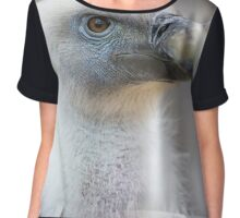 Portrait of a young white vulture. Chiffon Top