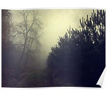 Drowning in the fog Poster