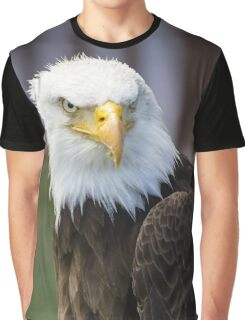 Beautiful north american bald eagle. Graphic T-Shirt