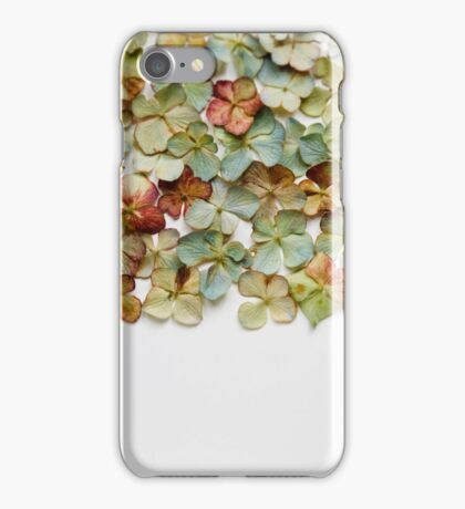 Hydrangea Petals no. 1 iPhone Case/Skin
