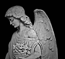 Black and White Angel by debidabble