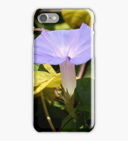 Purple Morning Glory iPhone Case/Skin