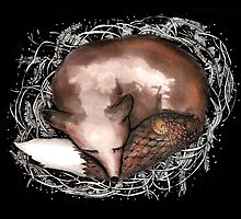 Sleeping fox by Jenny Wood