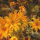 Garden Spirit  by Rebecca Bryson
