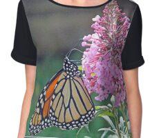 Butterfly on butterfly bush Chiffon Top