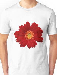 Red gerbera Isolated Unisex T-Shirt
