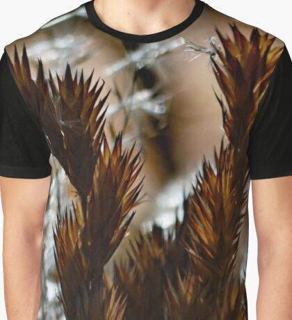 Afternoon Ferns Graphic T-Shirt
