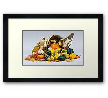 Cornucopia of Thanksgiving Framed Print