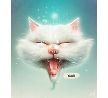 The Water Kitty Photographic Print