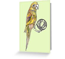 The Playful Parrot  Greeting Card