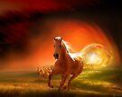 Gallop Through The Sun by Igor Zenin