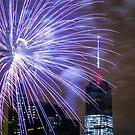 Fourth of July by depsn1